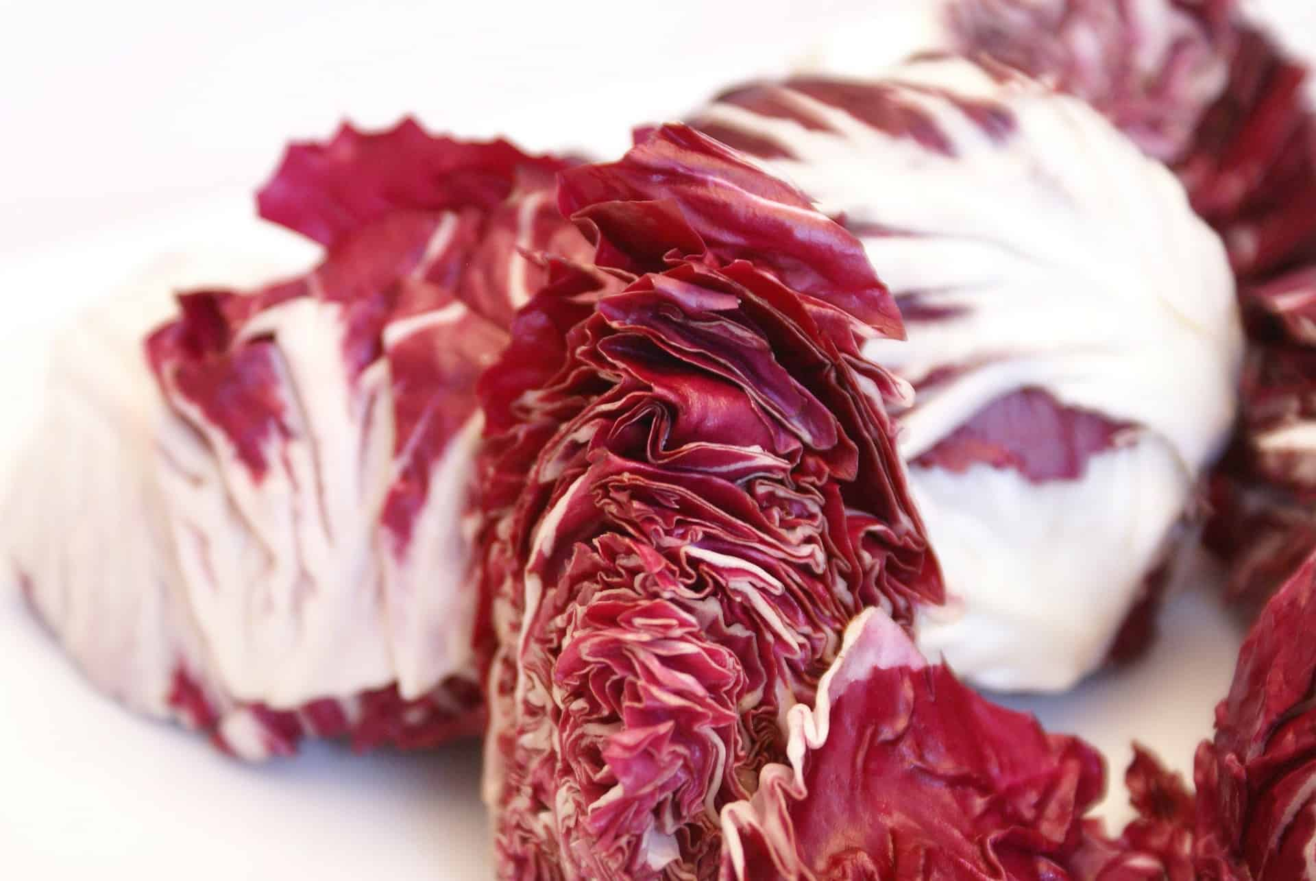Radicchio Salad Recipe